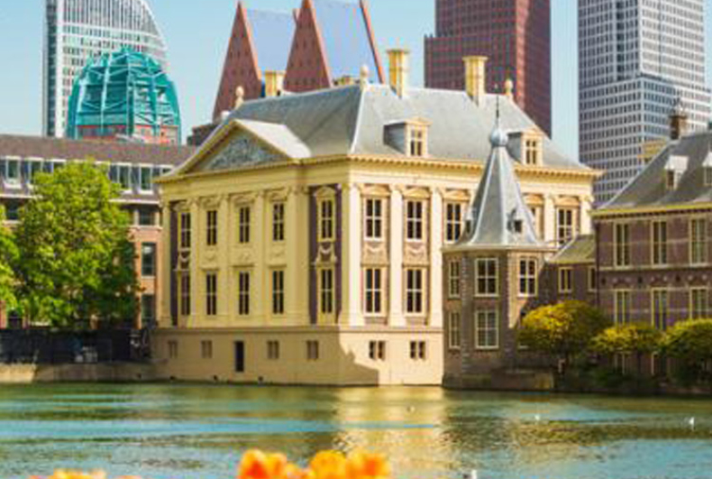 Why the Hague is an Art Lover's Dream