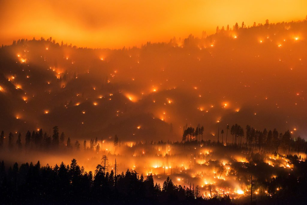 'It's Just Ashes': Northern California's Wildfires Have Taken a Devastating Toll on Local Artists