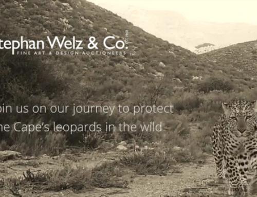 Weltz & Co Cape Leopard Trust Auction