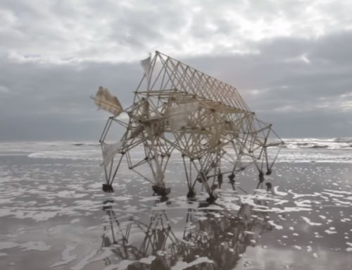 ….ARTFLIX FEATURE: STRANDBEEST EVOLUTION 2017****
