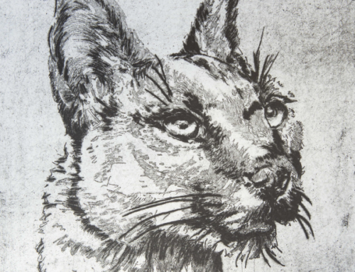 24/05/2019 Menagerie/ An exhibition of copperplate-etchings by Elsie de Beer Weich at The Association of Arts Pretoria